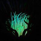 Green Anemone by Esteban  Toré