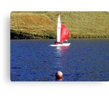 Buoys Toys Canvas Print