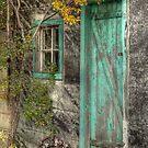 By the shed door by Elisabeth van Eyken