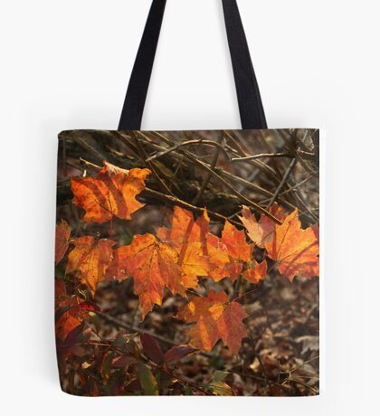 The Transparency of Fall Tote Bag