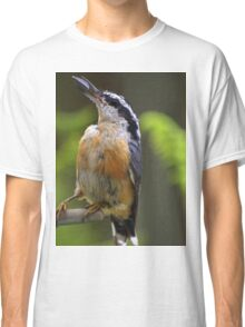 Bird With Sunflower Seed Classic T-Shirt