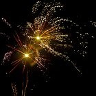 Firework by jaffa
