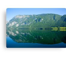 The grass is greener on the other side Canvas Print
