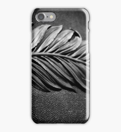 Iron Wing iPhone Case/Skin