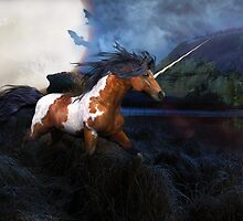 """Incantation""....The Rare Pinto Unicorn by LividPhoto"