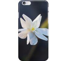 Field flower iPhone Case/Skin