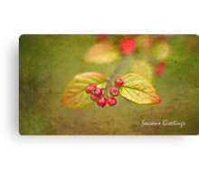 A Very Berry Christmas ... Canvas Print