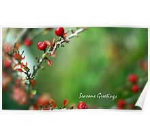 A Very Berry Christmas ... Poster