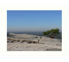 Trees On Top Of The Mountain Art Print