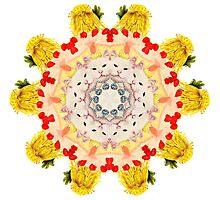 Royal Kitties, Cakes + Diamonds Mandala by Jamila Tazewell