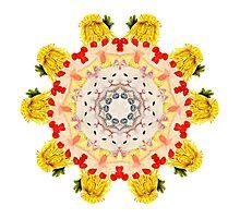 Royal Kitties, Cakes + Diamonds Mandala Photographic Print