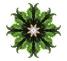 Kale and Ladybug Mandala by Jamila Tazewell