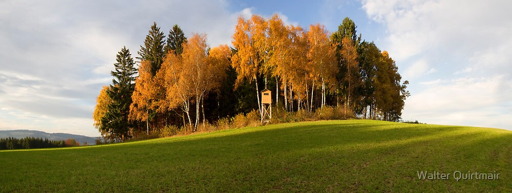 Fall Panorama by Walter Quirtmair