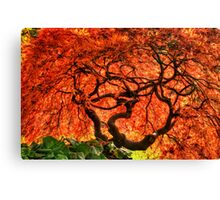 Maple Matrix Canvas Print