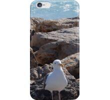 Malibu Seagull... iPhone Case/Skin