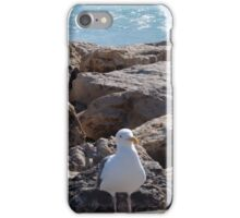 Malibu Seagull... iPhone Case/Skin