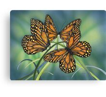 Topaz Wings Canvas Print
