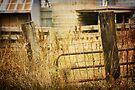 Fence Posts by KBritt