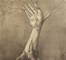 Tree Limb by Stephen Renn