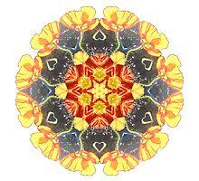 Ranunculus Love Mandala by Jamila Tazewell