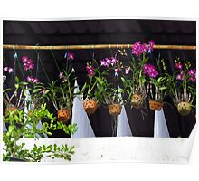 Vientiane - Orchids and washing Poster