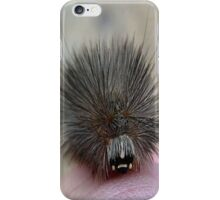 A Cool Cat iPhone Case/Skin