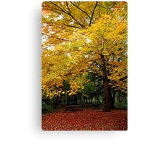 Time For Change Canvas Print
