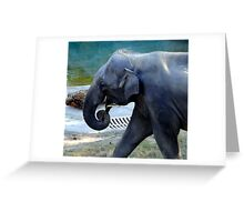 The Elephant's Lonely Parade Greeting Card