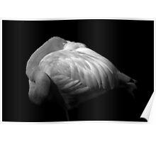 Flamingo (B&W) Poster