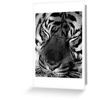 Tiger Face (B&W) Greeting Card