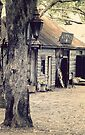 Australian Pioneer Village - Vintage Street Lamp by yolanda