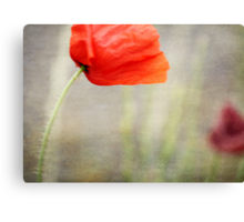 And we shall remember them....... Canvas Print