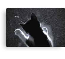 Kitten Chasing Snowflakes Canvas Print