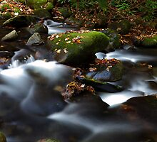 Soothing Waters by Gary L   Suddath