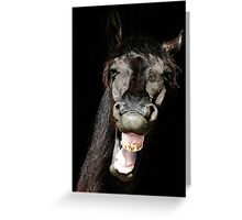 The Horse who laughed Greeting Card