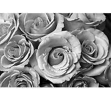 Rose Bouquet in Black and White Photographic Print