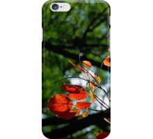Leaves - Fine by Nature! iPhone Case iPhone Case/Skin