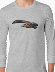 Alligator in Florida  Long Sleeve T-Shirt