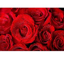 Red Rose Bouquet and Water Drops Photographic Print
