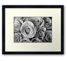 Bouquet of Roses with Water Drops in Black and White Framed Print