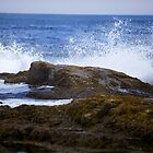 Ocean Waves - Maine by mattnnat