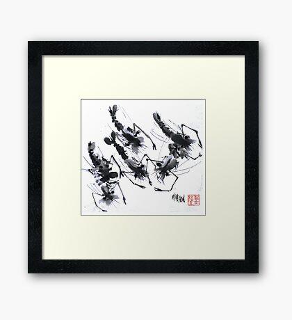 Sumi-e Shrimps represent Abundance! Framed Print