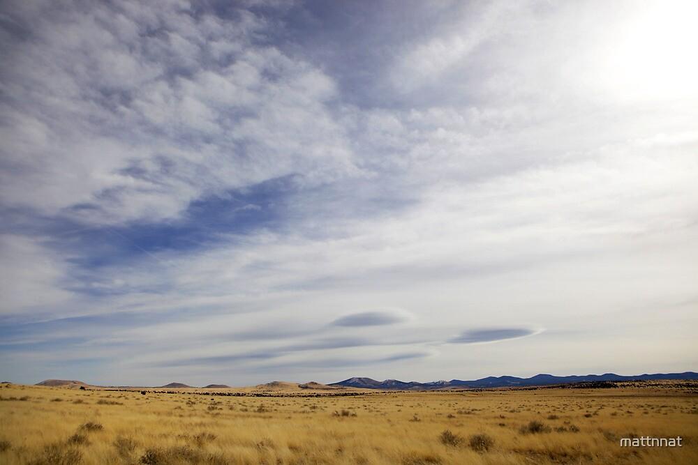 Desert - New Mexico by mattnnat