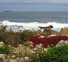 Cape Ann color, Gloucester, MA by artwhiz47