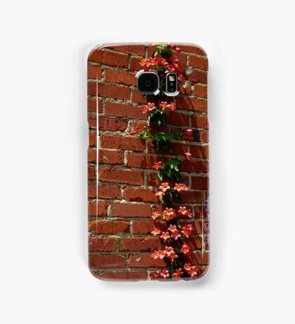 Climbing Samsung Galaxy Case/Skin