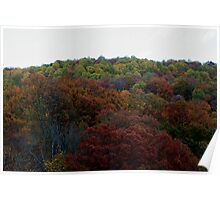 Smoky Mountains in the fall Poster