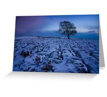 Malham Tree Greeting Card