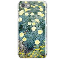 Yellow Flowers... iPhone Case/Skin