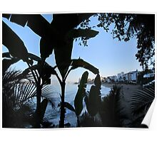 Jungle path with view to the beach of Puerto Vallarta Poster