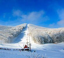 Snow center at Alps by Tania Koleska
